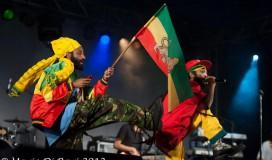 Addis image