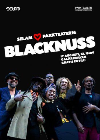 Blacknuss_Web flier